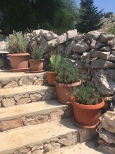 KOrnati steps